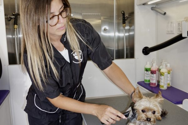 Woof Spaw Grooming Services Montreal Longueuil Laval Blainville Mascouche Bianca Guerrera Emily Andrade 10